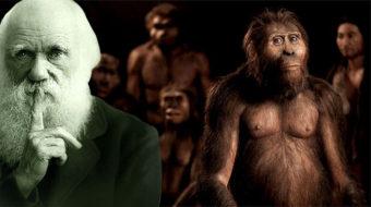 El Enigma del hombre-mono